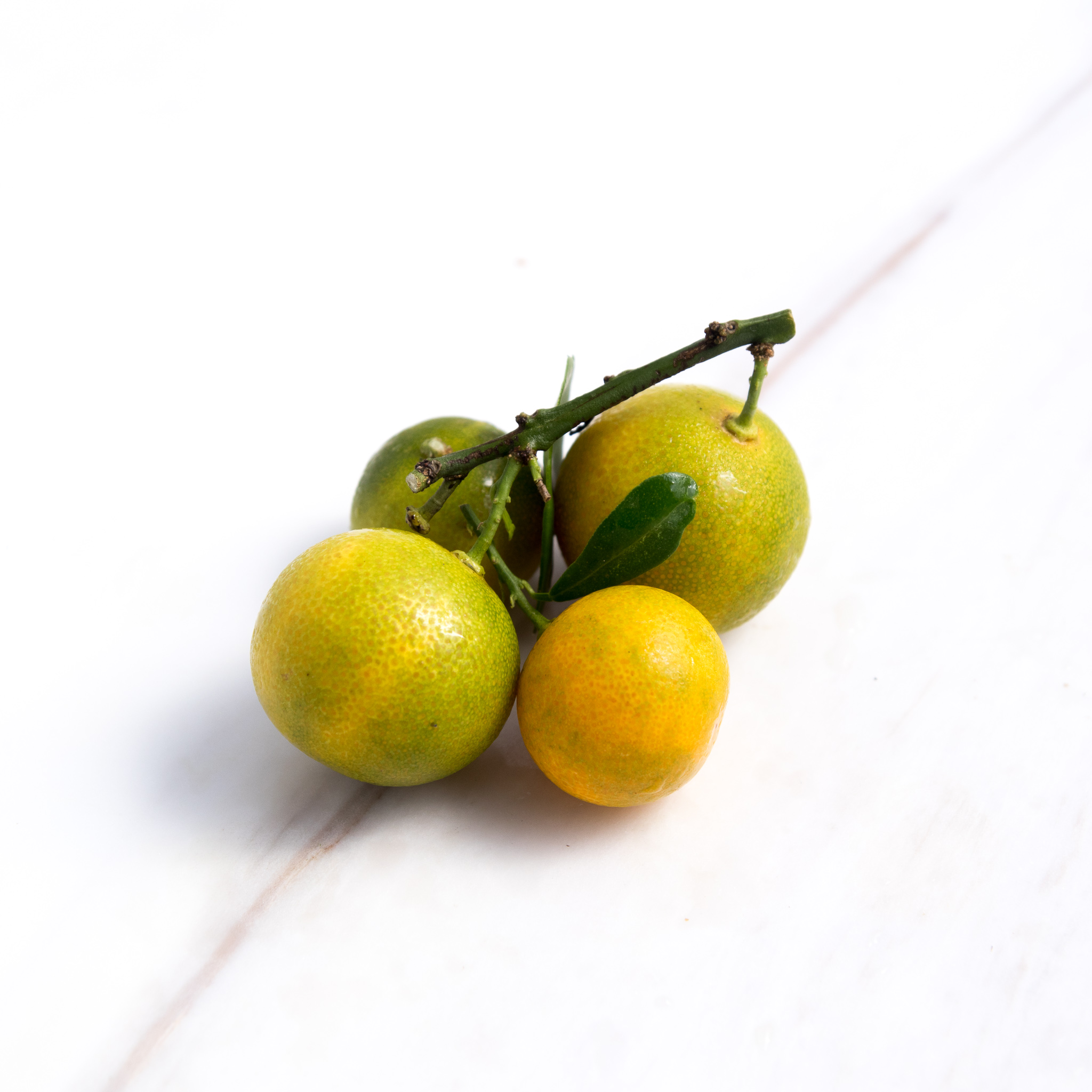 Kumquat (ส้มจี๋ด)